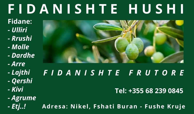 FIDANISHTE FRUTORE HUSHI - NIKEL